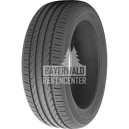 225/55 R19 99V Proxes R 46 A